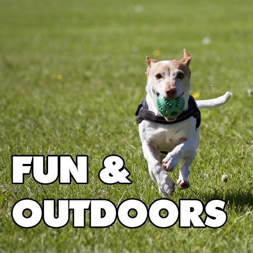 Fun & Outdoors